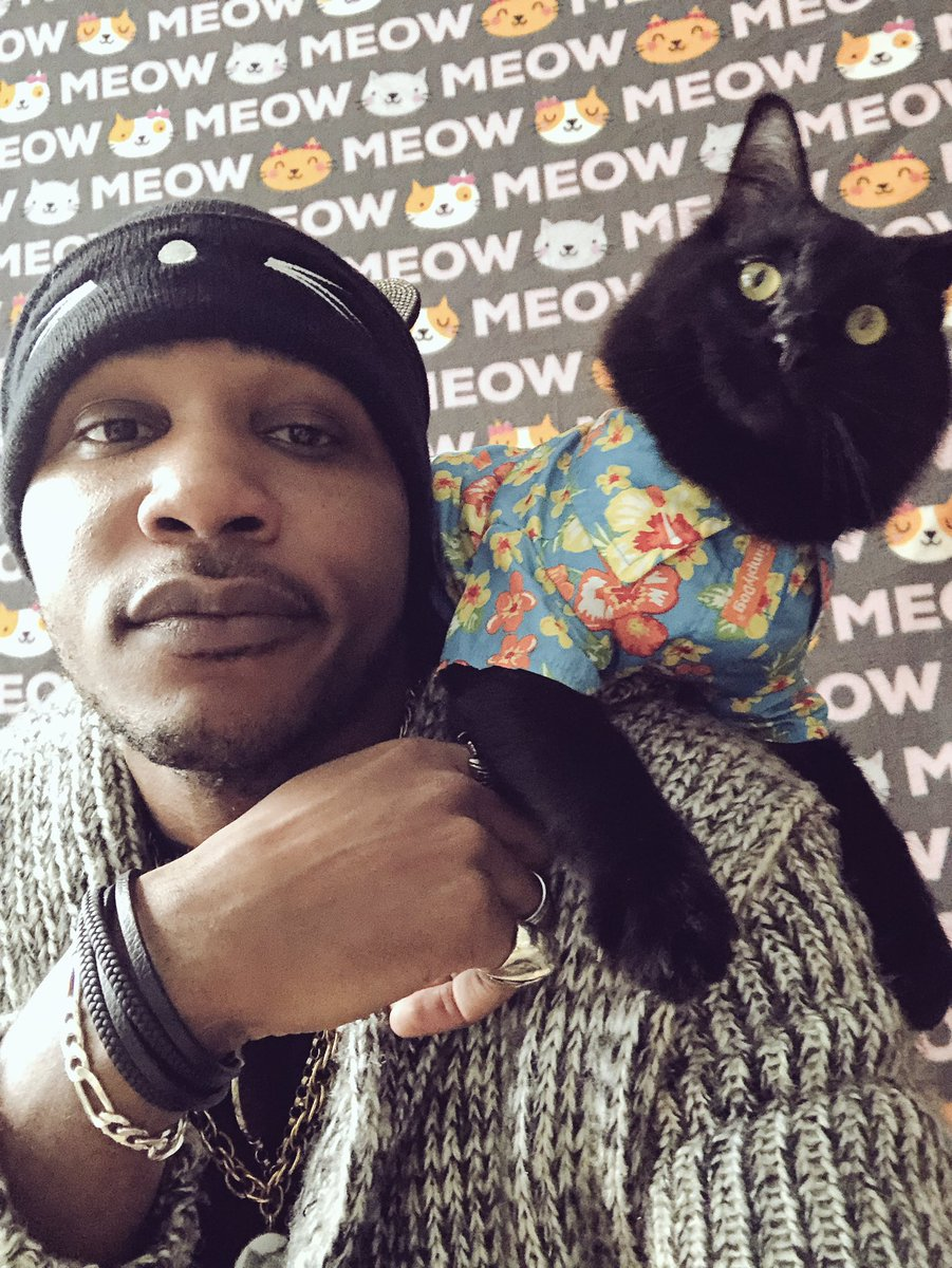RT @iammoshow: Retweet this if you own, love or would adopt a black cat https://t.co/8E82eFzRBp