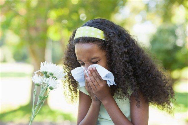test Twitter Media - ¿Es correcto hablar de la alergia a la primavera? 8 consejos para sobrellevarla https://t.co/yfpTykcpKY Vía: @infosalus_com https://t.co/PyPGjjHQds