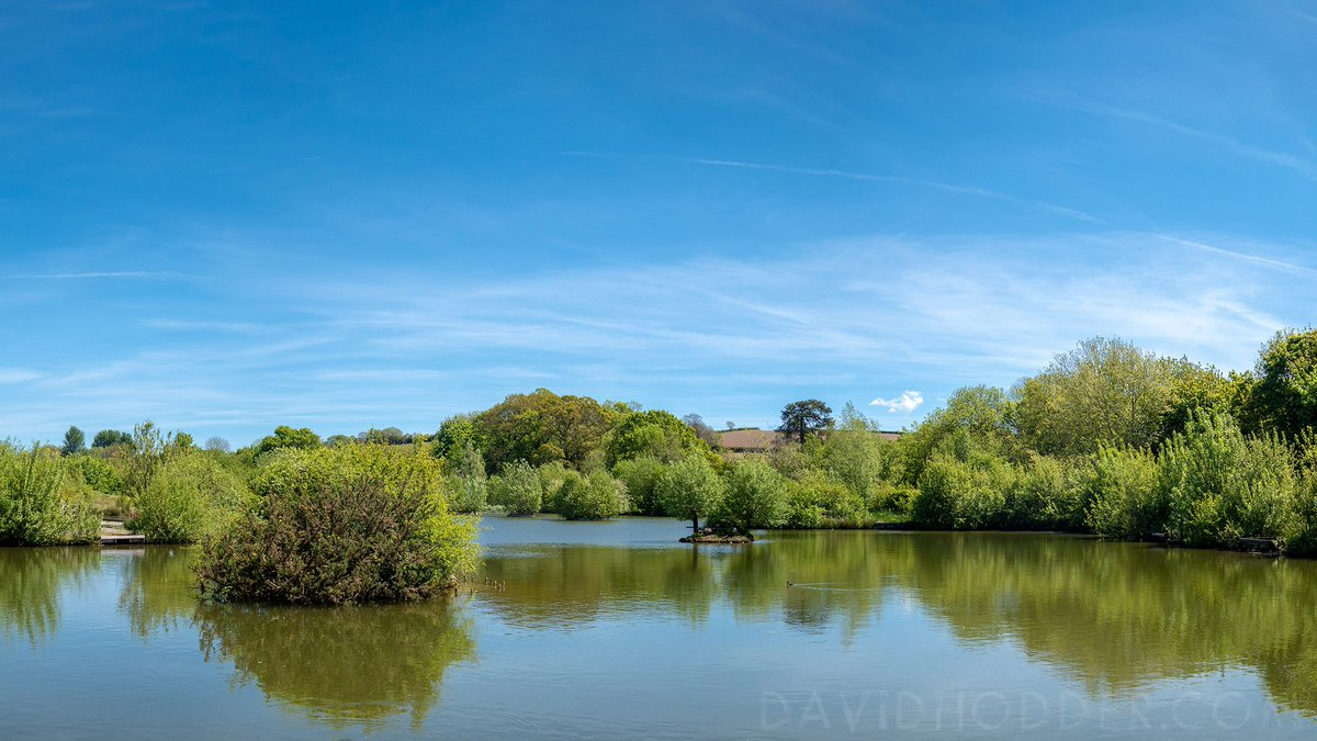 test Twitter Media - Blue sky, fresh green growth, a warm breeze - could this be summer? ☀  Filham Park, #Ivybridge  #Summer #Devon #Plymouth #Lake #Fishing #Photography https://t.co/mwkjVlyVRH