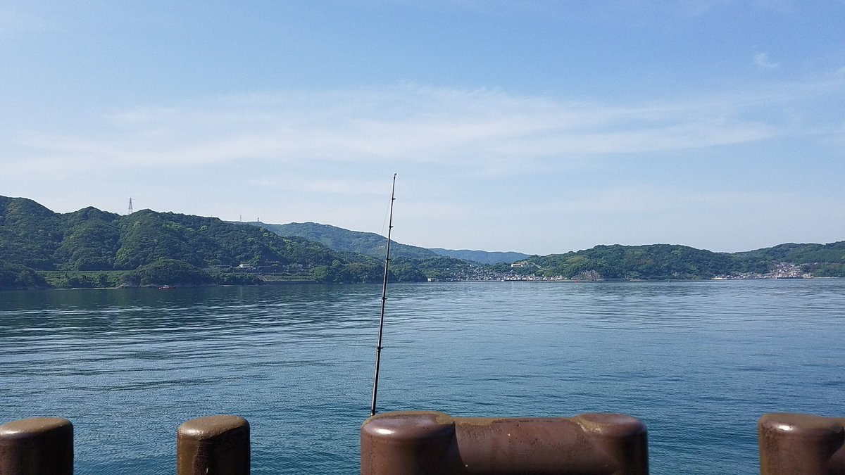 昨日は琵琶湖を離れ何年か振りの和歌山にチームのメンバーと海釣りに行って来ました‼ 釣果は…イワシとサバでした。 投げ釣りもしましたが時期がまだ早くアタリ無し… またには海釣りも楽しかったです。 https://t.co/3LPoAwW7DR