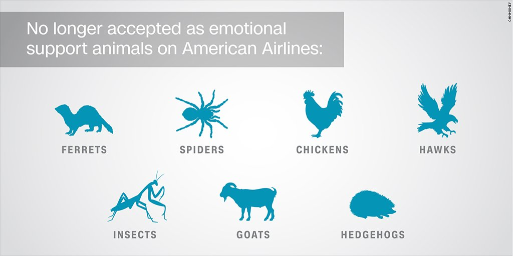 American Airlines bans insects, hedgehogs and goats as emotional support animals https://t.co/gxtONDKH4t https://t.co/K1i3JDcMKn