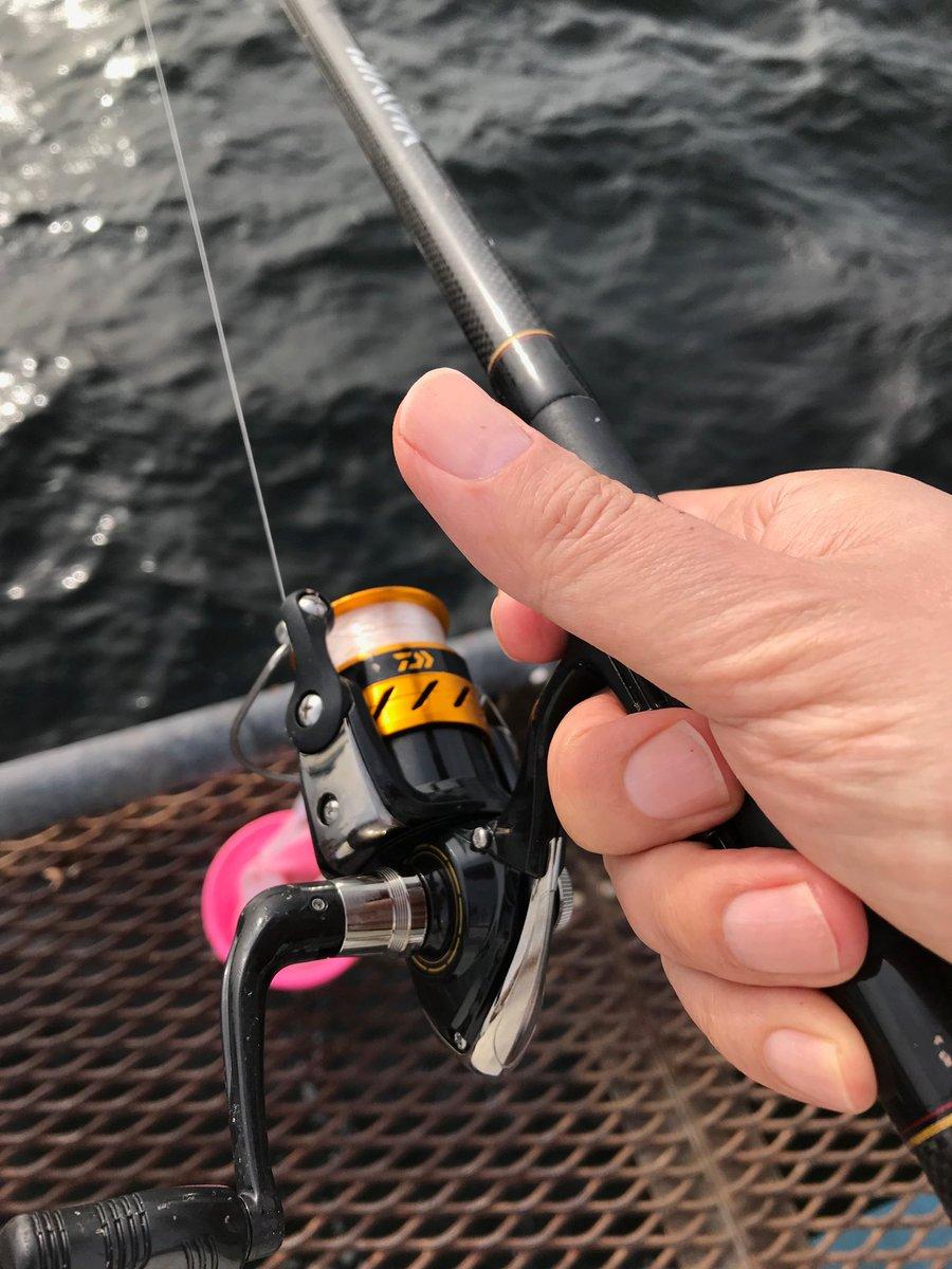 海釣り施設の床面は、ご覧のとおり網格子。基本的に高所も水もダイジョウブなんですが、小銭や携帯を落とさないか、ヒヤヒヤしました! #海釣り https://t.co/N4oWJeh8MU