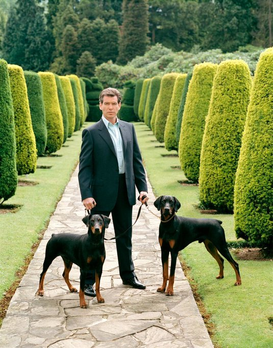 Happy 65th birthday to Pierce Brosnan today