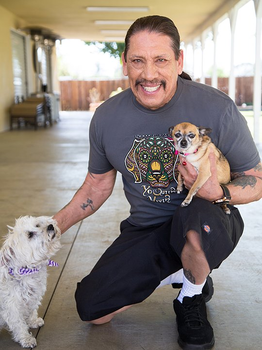 Happy birthday Danny Trejo! We hope you get to pet some cute pups today!