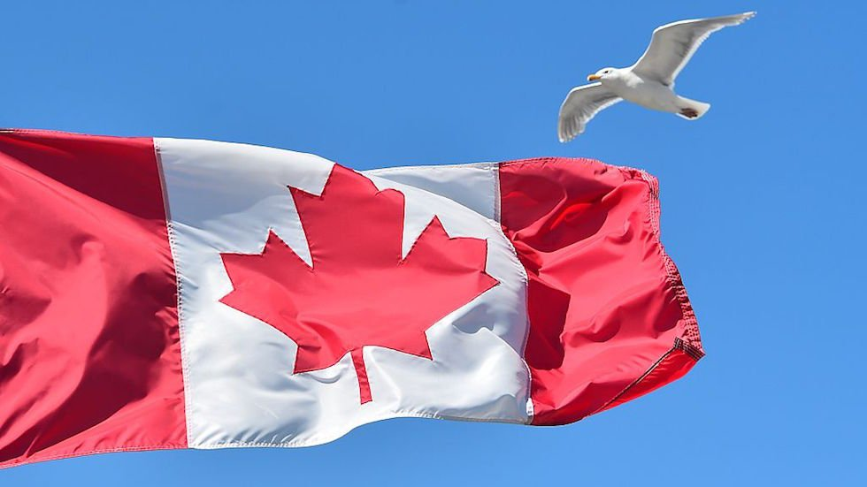Vermont governor signs historic bill allowing state to import drugs from Canada https://t.co/h70v4IToih https://t.co/evcS3XlHAn