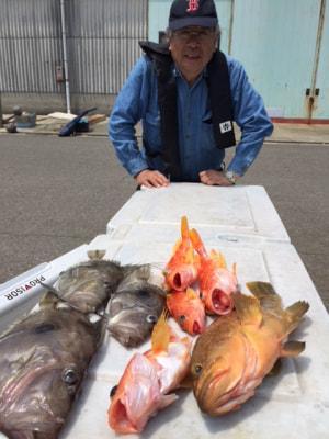 和歌山県中部 築山丸  細尾様の釣果    落し込み、ノマセ釣りで出船します。 予約お待ち申し上げます。 https://t.co/TPcMe6Zznx https://t.co/looVcWbdNG