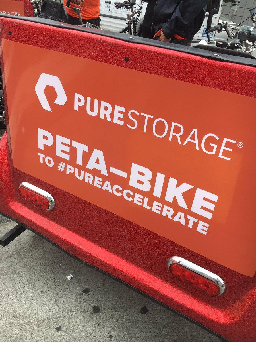 #pureaccelerate