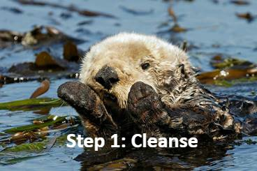 @AbiFaro You otter remember your new three-step skincare routine! https://t.co/UEp0AH0313