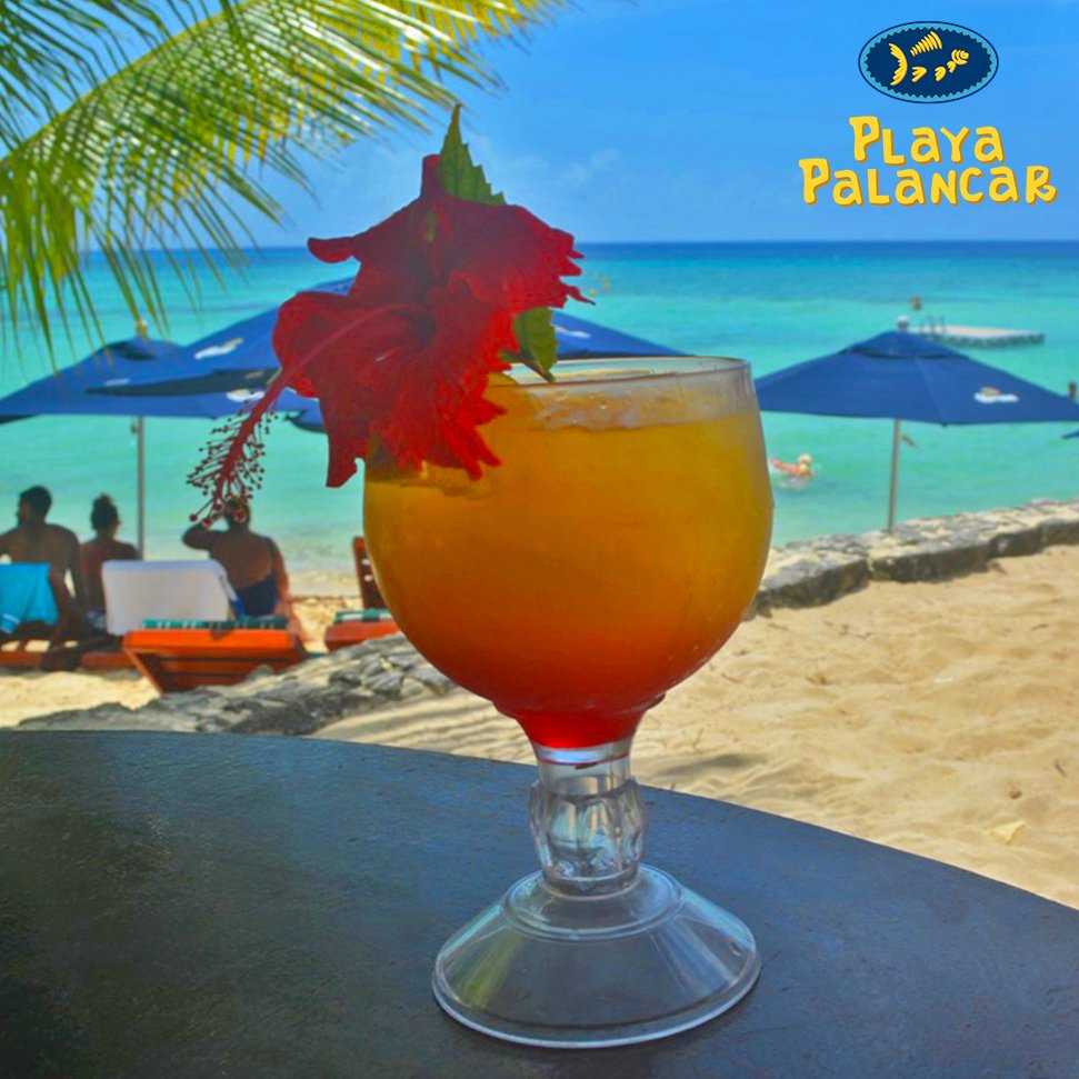 RT @PalancarCozumel: La vida en #PlayaPalancar, #Cozumel! 🍹 #SundayFunday #FelizDomingo #Cruise #Crucero #ChooseFun https://t.co/4IZCihSSpF