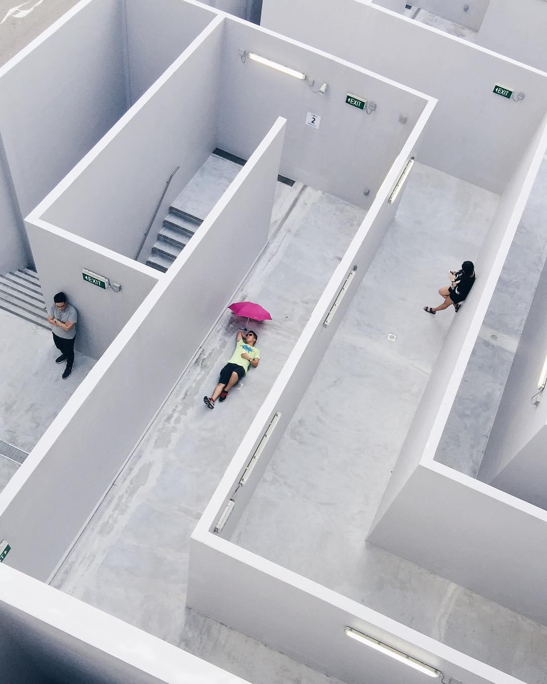 """Isn't life just a-maze-ing?"" #WHPgetlost https://t.co/3P3ELQ5iuu https://t.co/MiVTMXVZH8"