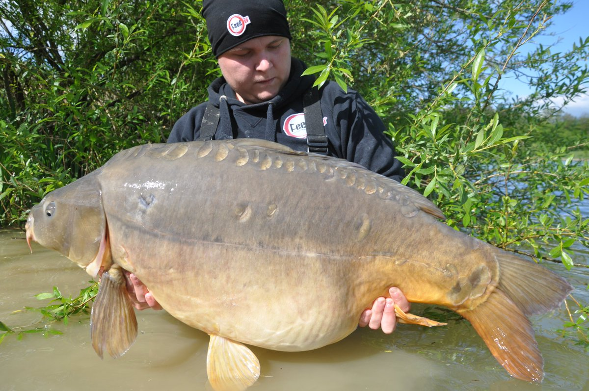 #<b>Bigcarp</b> #carpfishing #fishing #followback https://t.co/0oDcP4QZAH