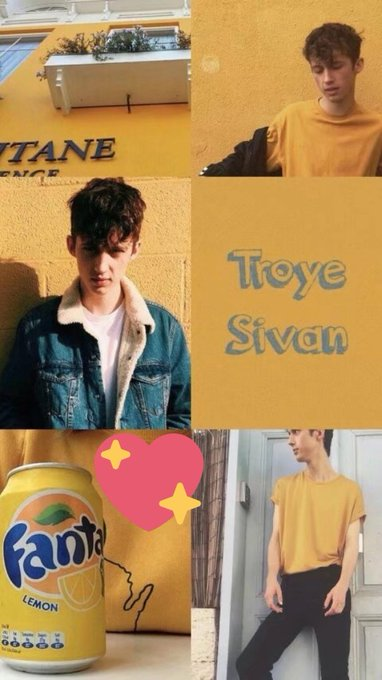 I  hope your future will be better  more handsome and happier HAPPY BIRTHDAY TROYE SIVAN your  chinese  fan