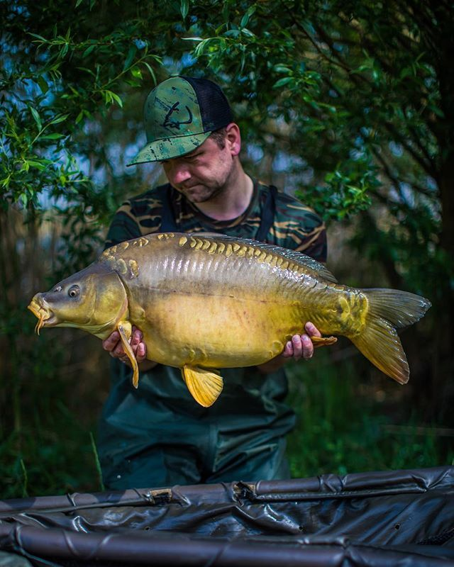 Duo X-tra boilies success 🐟👍📷 #<b>Onthebank</b> #lkbaits #carpfishing #fishing #angling #