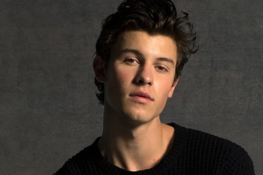 Shawn Mendes explains why a lot of his lyrics don't include pronouns