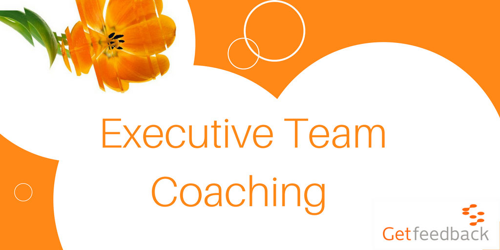 test Twitter Media - There is an increasing demand from #executives to improve the productivity and effectiveness of #teams. Hear how Getfeedback have developed a model of Executive Team Coaching to tackle it! https://t.co/X2CmCXOFfx https://t.co/jbFabqj3Gz