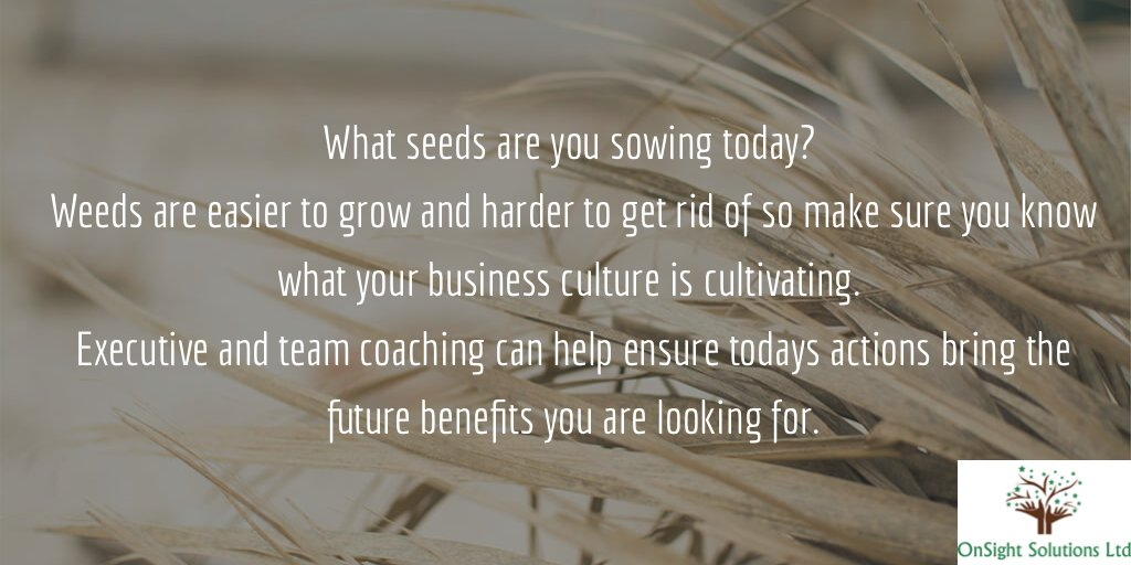test Twitter Media - What seeds are you sowing today?  Weeds are easier to grow and harder to get rid of so make sure you know what your business culture is cultivating.  Executive and team coaching can help ensure todays actions bring the future benefits you are looking for. https://t.co/laK8rjXUCA