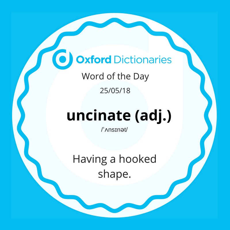 test Twitter Media - Word of the Day: uncinate https://t.co/8H9WmRW21b https://t.co/dOKPdAS4a7