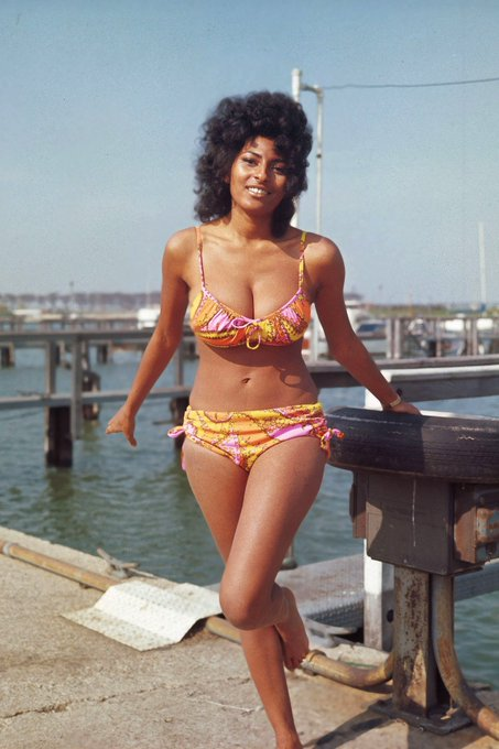 It\s my b day but also happy bday Pam Grier...dear god look at her.