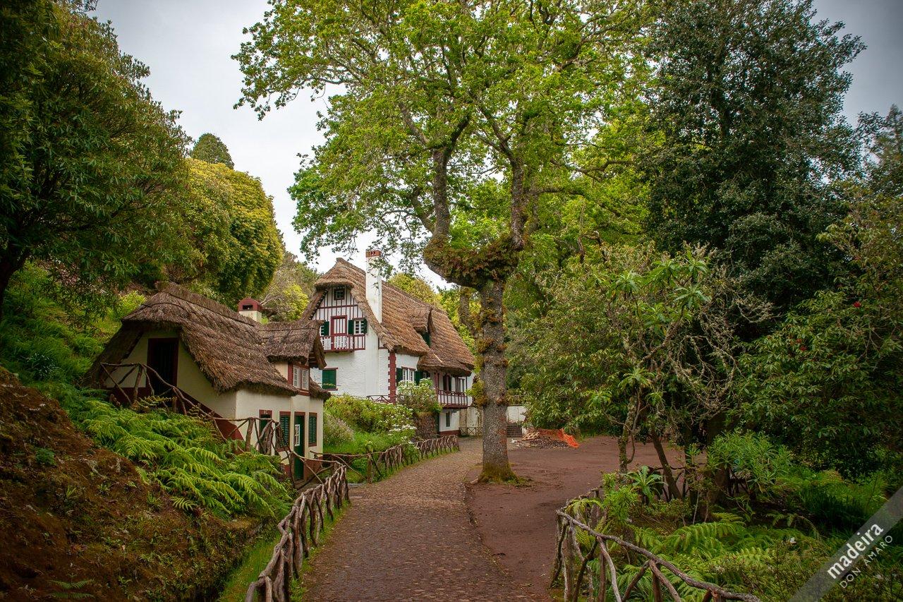 Queimadas #Madeira from here is the start of the Levada do Caldeirão Verde  #sharingmadeira #madeiraful https://t.co/ouAH1hqpTh