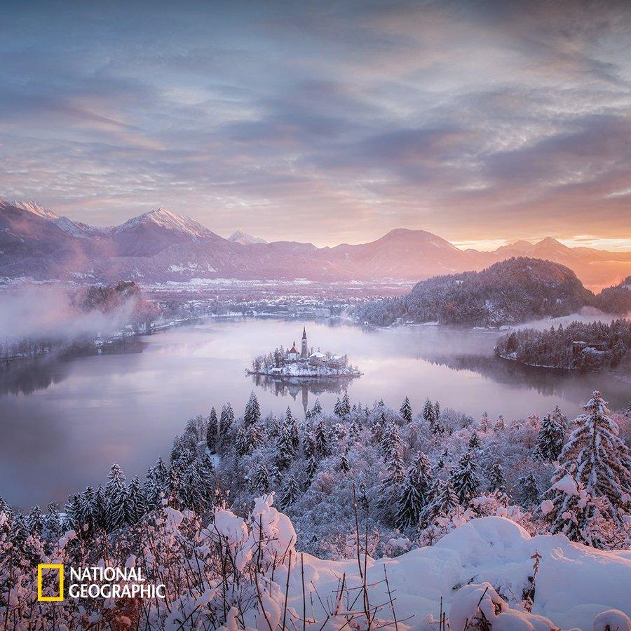 #NG오늘의포토 눈 내린 슬로베니아 블레드 호수의 모습은 동화 속의 한 장면 같습니다. 블레드 호수 가운데 작은 섬에는 17세기 후반에 지어진 교회가 마법의 성처럼 자리 잡고 있습니다. https://t.co/SsHoXNF1zG