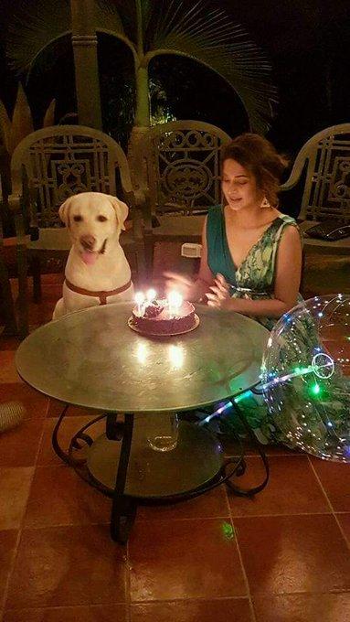 Happy birthday Jennifer Winget