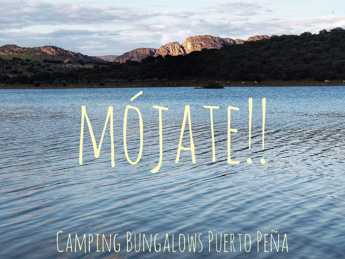 Mójate y ven a La Siberia!!   #Extremadura #camping #carpfishing #<b>Bird</b>watching https://t.co/