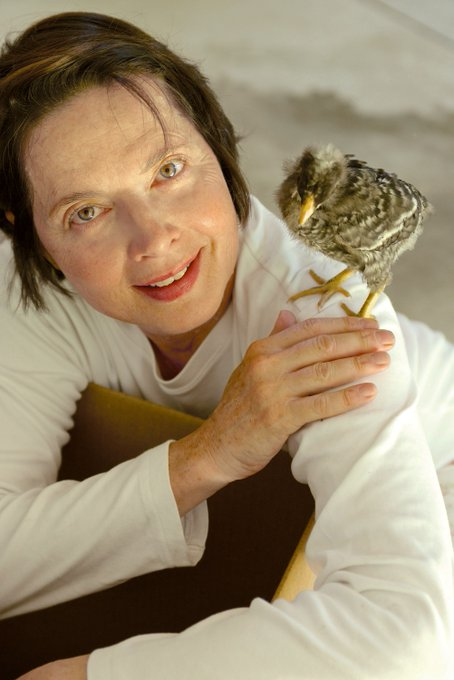 Happy Birthday The actress on why chickens make the best pets: