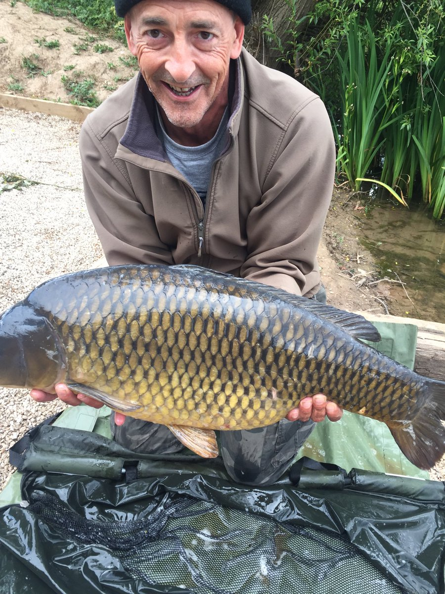 Nice <b>Common Carp</b> #carp #carpfishing https://t.co/zWba1waL4j