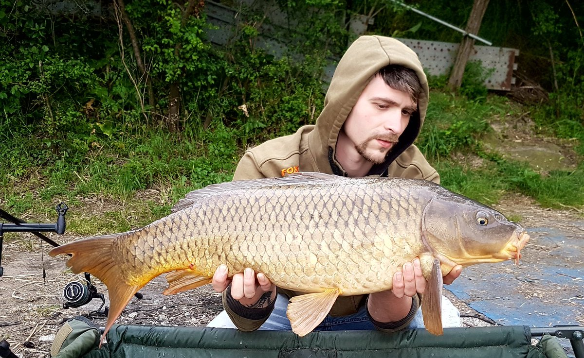 #carp #carpfishing #fish #angler #Italia #marche #carpfishing https://t.co/JBBNsm6aGb