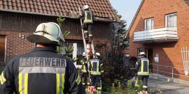test Twitter Media - Feuerwehr löscht Nadelbaum in der Berliner Straße https://t.co/bXgk2uEYIh https://t.co/zF1PIB25rQ
