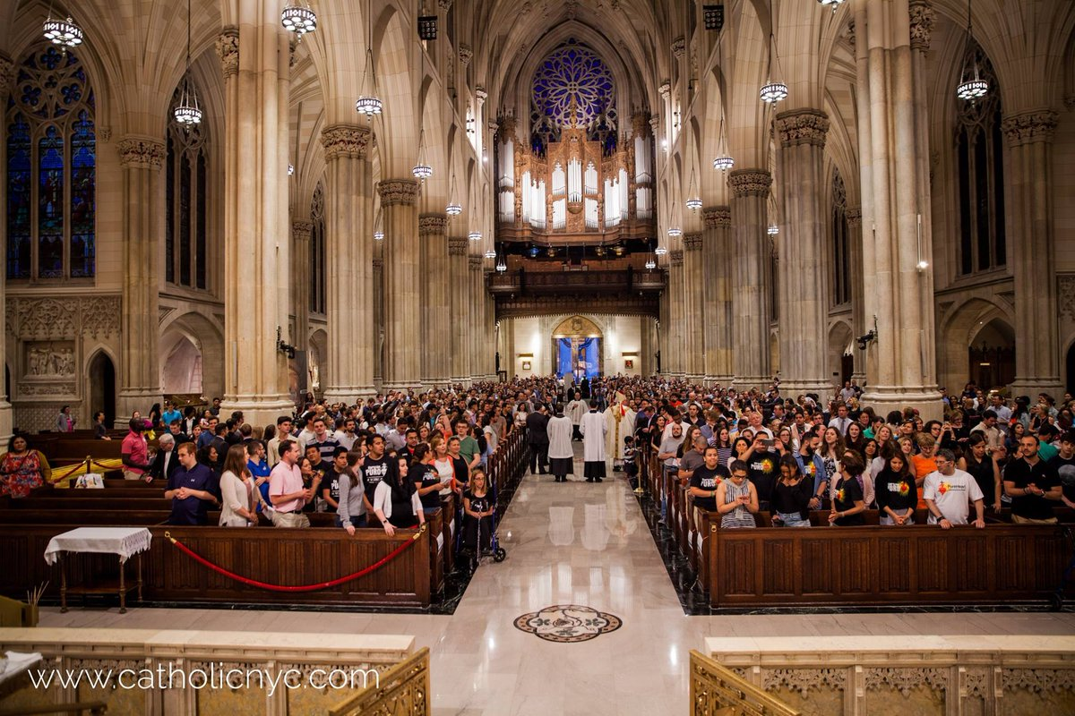 test Twitter Media - I look forward to celebrating our Young Adult Mass at St. Patrick's Cathedral with all of you on Wednesday, June 20th at 7:30pm. If you're in the city, please join us! @StPatsNYC @CatholicNYC https://t.co/jfkVWSTCpL