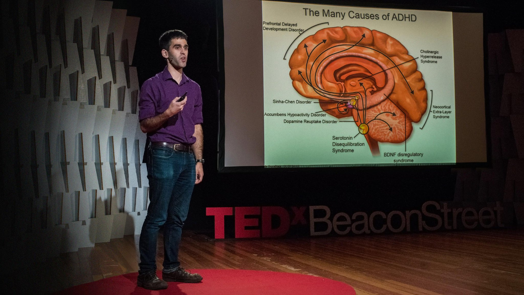 What we'll learn about your brain in the next century: https://t.co/CL6oE0nkLT https://t.co/5v7AH2B8kO