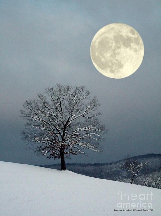 La luna. https://t.co/oMmujWORND
