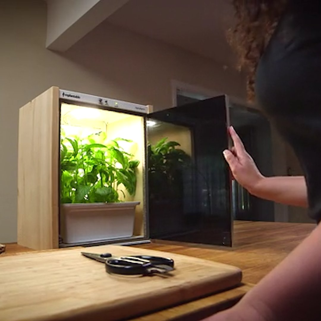 Save the planet right at home with these 11 green inventions