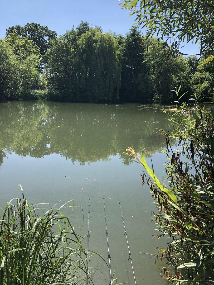 Rods out on a new lake 🤞#fishing #carpfishing #fishinglife https://t.co/di9231TS7t