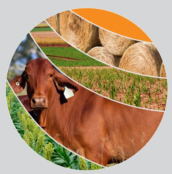 The #ABARES #Agricultural #commodities: June...