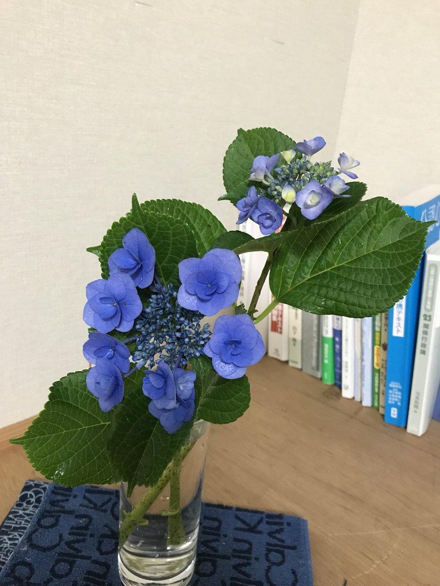 花を紫陽花に変えました。 https://t.co/jOCQ1EQqhT