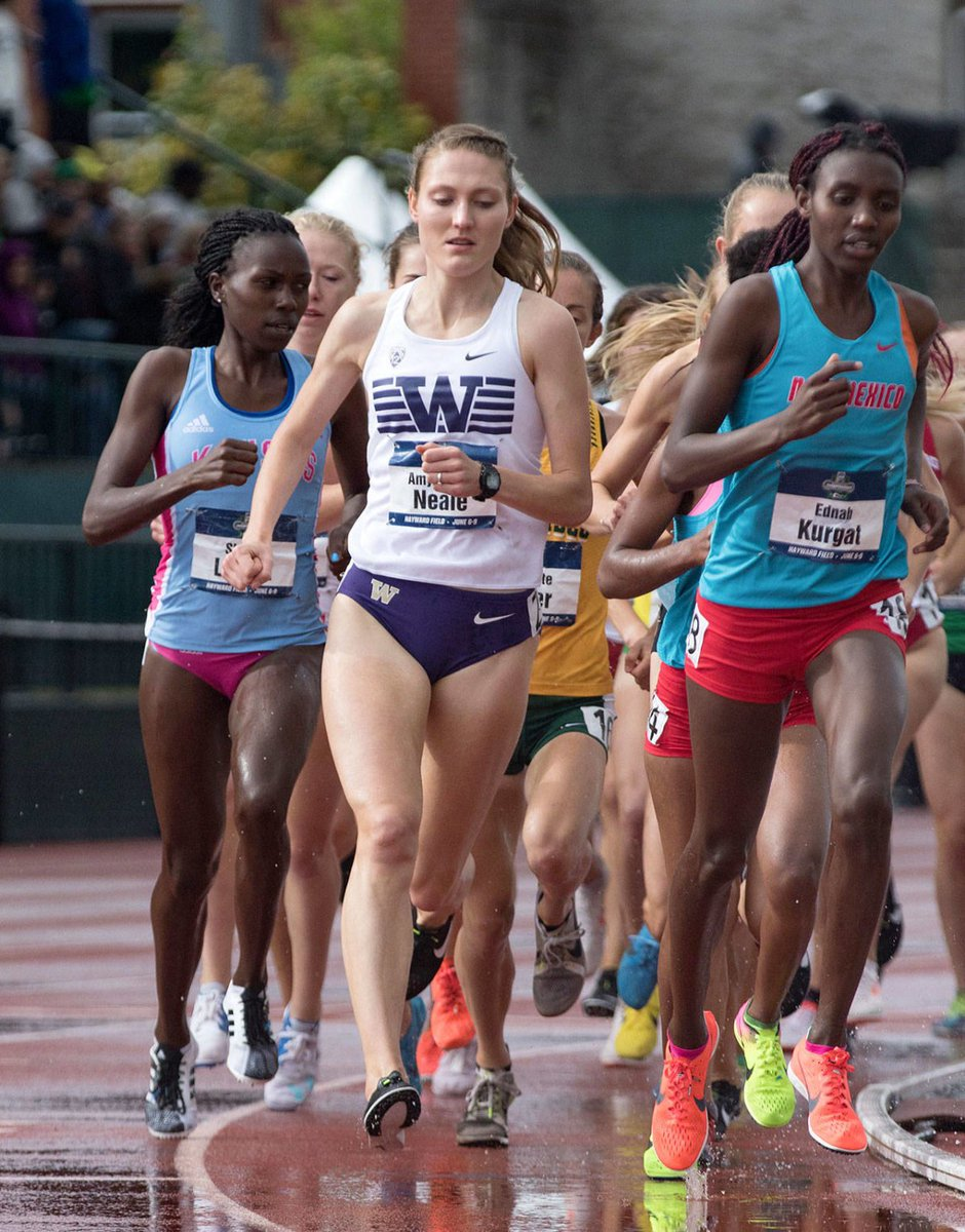 test Twitter Media - Former @GPHSGRIZZLY track standout Amy-Eloise Neale eyes a professional distance-running career after finishing up at UW. https://t.co/NcIsWcS1To https://t.co/dkrIGlYRYC