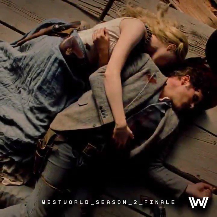 RT @WestworldHBO: This is the end.  The #Westworld Season 2 finale premieres tonight at 9PM on @HBO. https://t.co/ewM0EqGtax