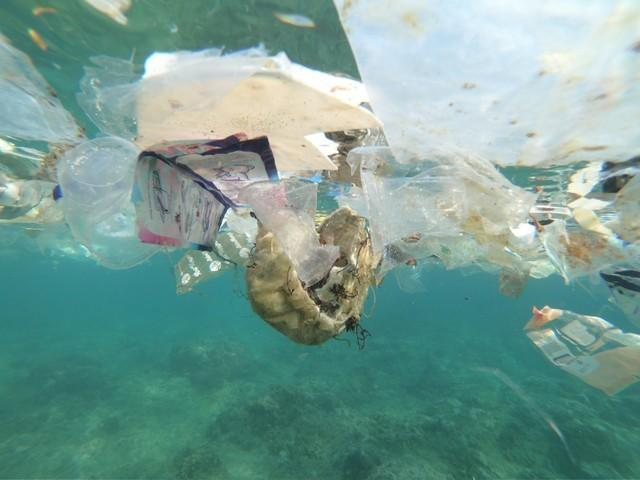 Plastic waste washes up on Australia's distant shores, rings change at the checkout https://t.co/YC71r8veKb https://t.co/wVHElup61e