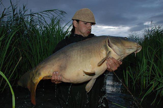 'heavy' 🐟🙂 @<b>Lukaskrasa</b> #lkbaits #carpfishing#fishing#angling #karpfenangeln#a