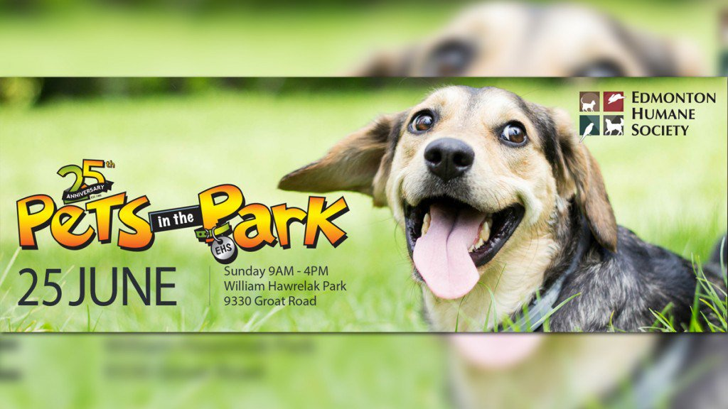 Pets in the Park is Back – Check Them Out at Hawrelack Park in Edmonton ThisWeekend Ay0jLgPKRU