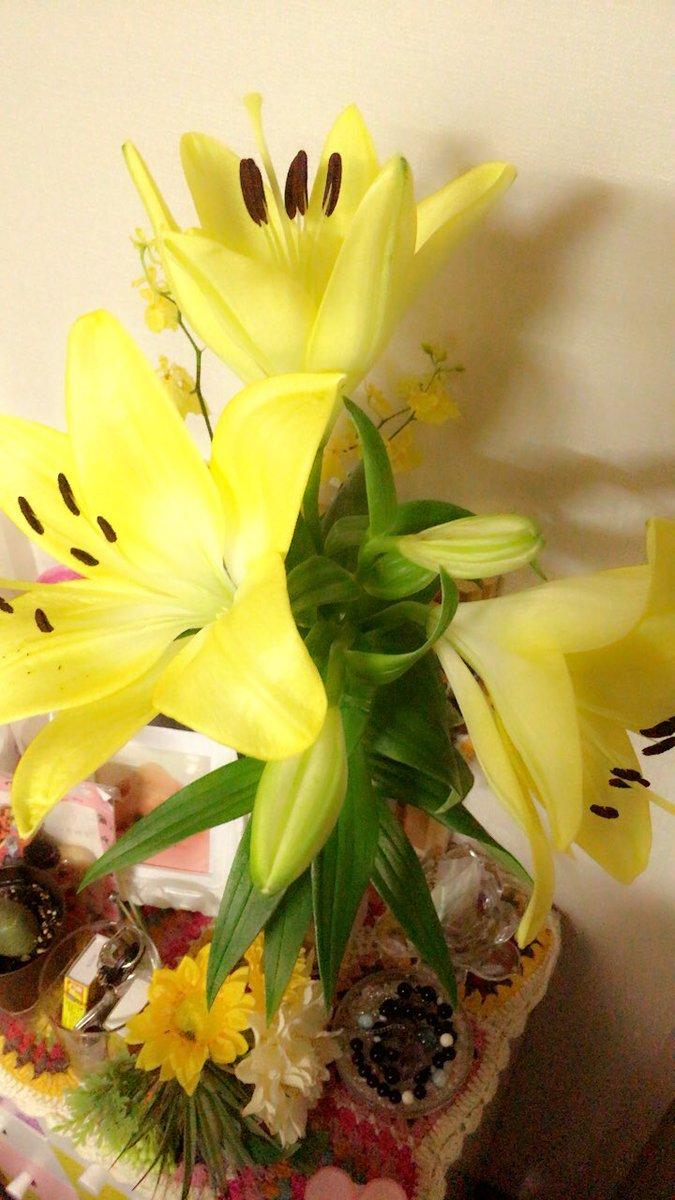 百合が咲きました。 piuKyo5oae