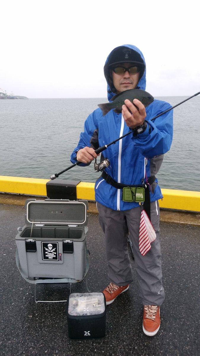久しぶりの海釣り。 雨の中の長潮でこの釣果は自分的には上出来(^-^) https://t.co/kaa1iFDjiC