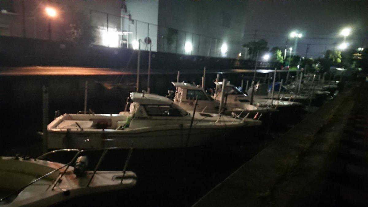 今日は、ニンニンとのラスト釣行(^ー^) ボートシーバス、 撮影抜きで楽しんで参りまする♪ #東京湾 #シーバス https://t.co/eBxi3Sf0cs