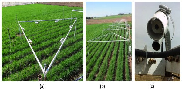 test Twitter Media - Initial response of phenology and yield components of wheat (Triticum durum L., CIRNO C2008) under experimental warming field conditions in the Yaqui Valley https://t.co/GNmd56rDQe https://t.co/W1Yf8id7m8