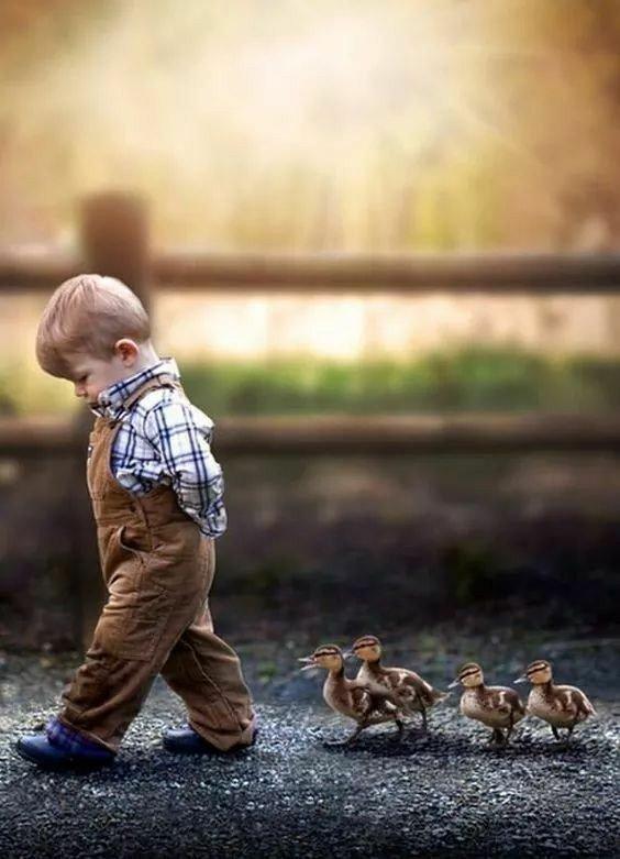 Anche se talvolta ti pare di essere solo, un amico è accanto a te per ascoltare il tuo cuore  #buongiorno #28giugno   #InVoloSenzaRete https://t.co/RAHxGvrVUp