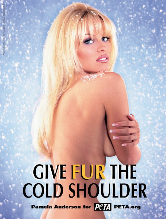 RT @peta: Throwback to @pamfoundation's FIRST ever PETA ad where she gave fur the cold shoulder in 1997 ❄️???? https://t.co/tsY6MmI9rA