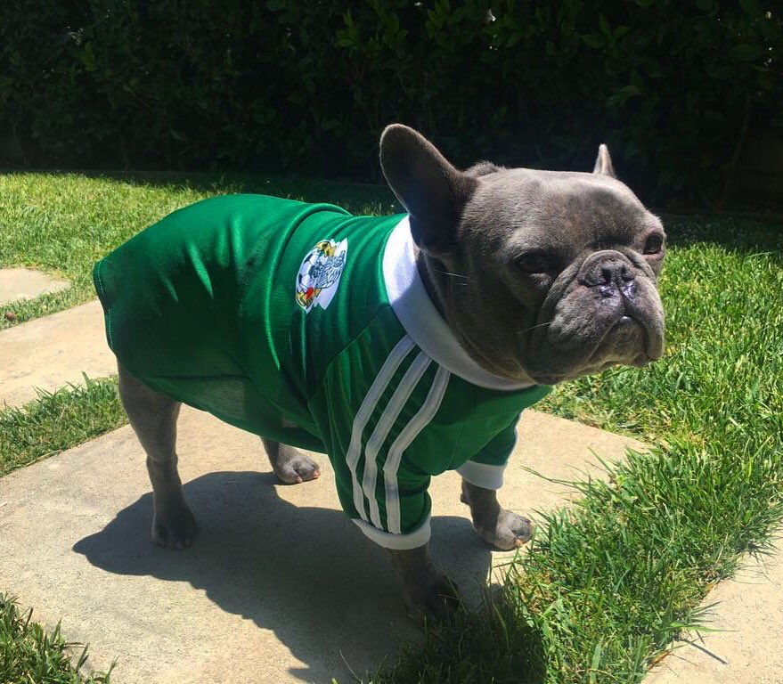 Look who else is ready for the game! ???????????????????????? #Popeye #WorldCup #VamosMexico https://t.co/u24r6hXU0L