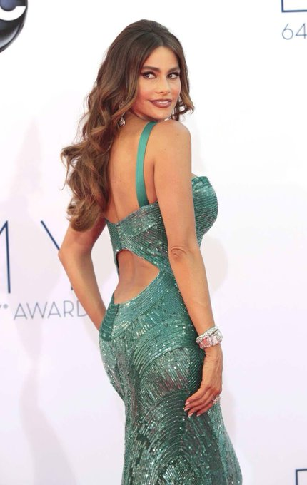 Happy Birthday to Sofia Vergara, she turns 46 today